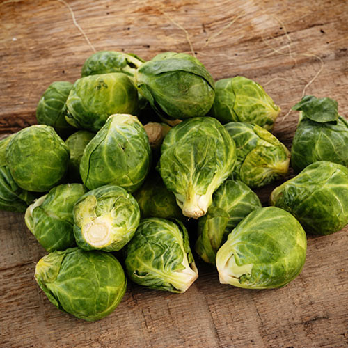 Winter answer: BRUSSEL SPROUTS