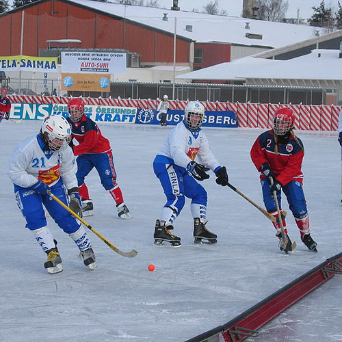 Winter Sports answer: BANDY