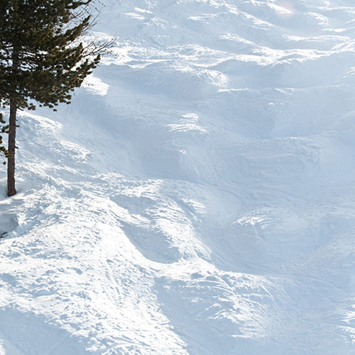 Winter Sports answer: MOGULS
