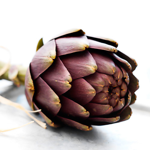A is for... answer: ARTICHOKE