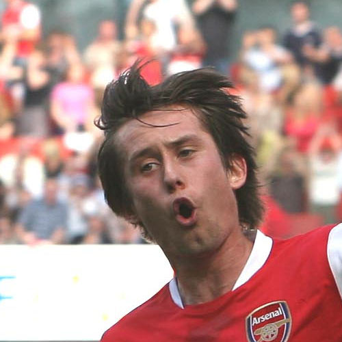 Arsenal FC answer: ROSICKY