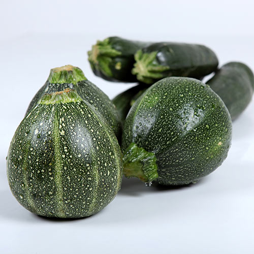 Autumn answer: ZUCCHINI