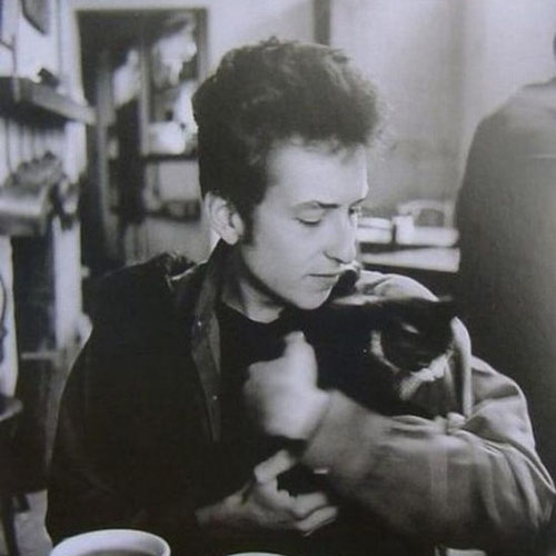 Cat Lovers answer: BOB DYLAN