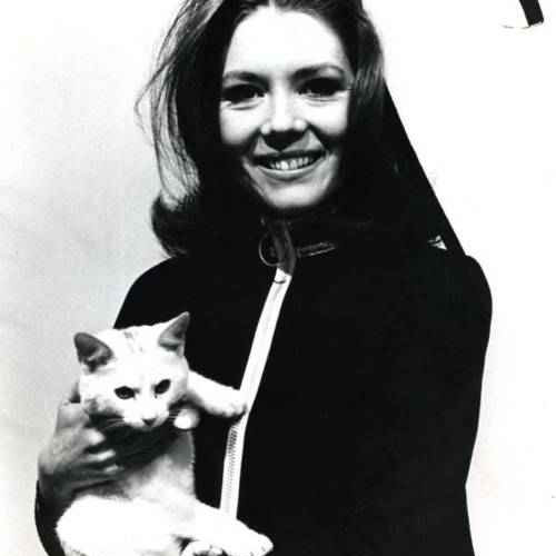 Cat Lovers answer: DIANA RIGG