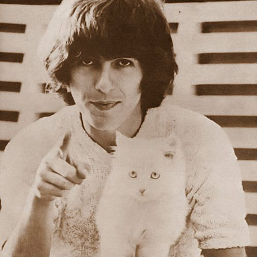 Cat Lovers answer: GEORGE HARRISON