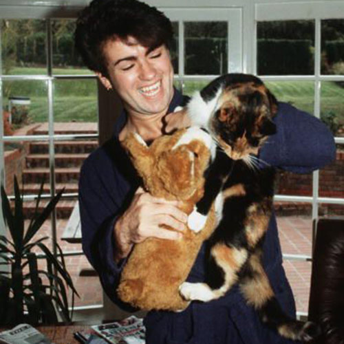 Cat Lovers answer: GEORGE MICHAEL
