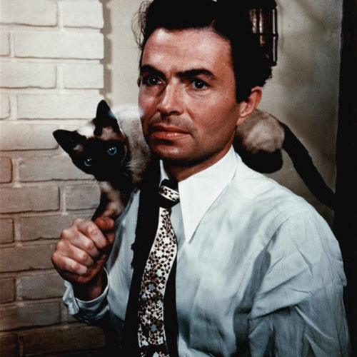 Cat Lovers answer: JAMES MASON