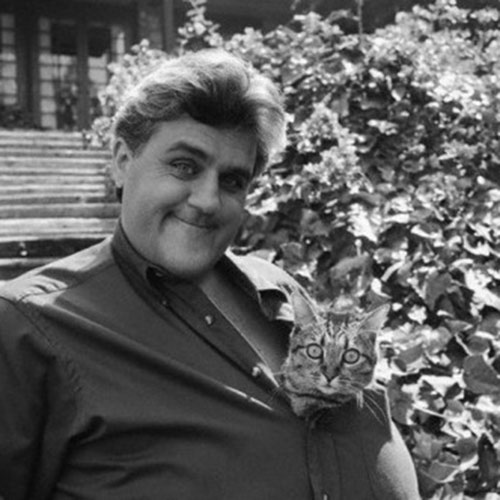 Cat Lovers answer: JAY LENO