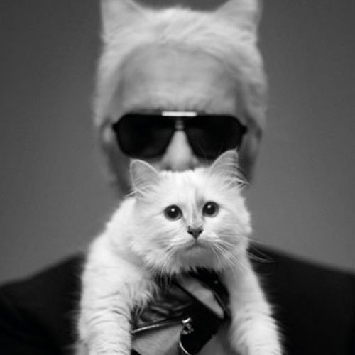 Cat Lovers answer: KARL LAGERFELD