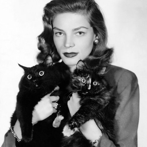 Cat Lovers answer: LAUREN BACALL