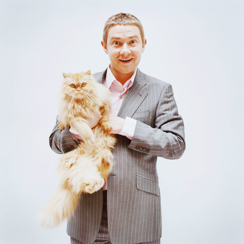 Cat Lovers answer: MARTIN FREEMAN