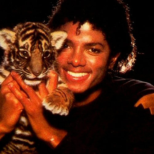 Cat Lovers answer: MICHAEL JACKSON