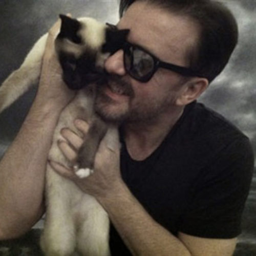 Cat Lovers answer: RICKY GERVAIS