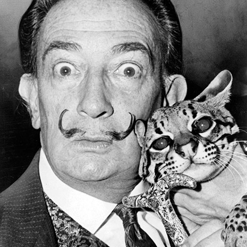 Cat Lovers answer: SALVADOR DALI