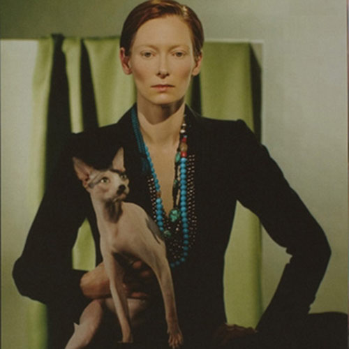 Cat Lovers answer: TILDA SWINTON