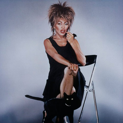 Cat Lovers answer: TINA TURNER