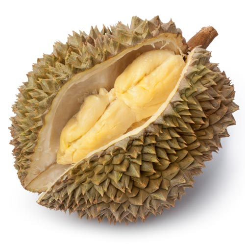 D is for... answer: DURIAN