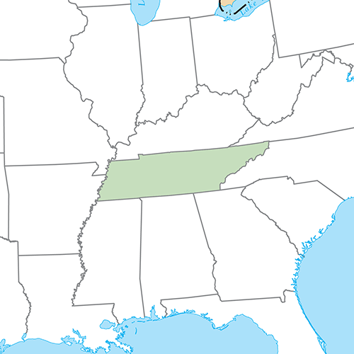 Etats Américains answer: TENNESSEE