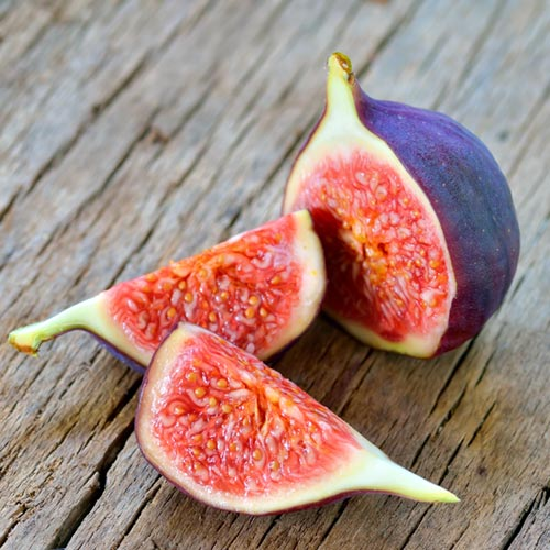 F is for... answer: FIG
