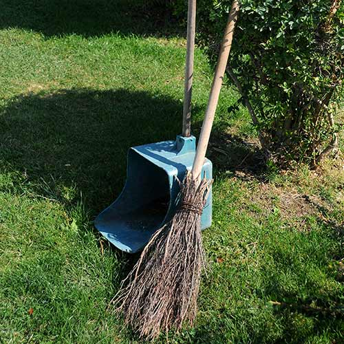 Gardening answer: BROOM