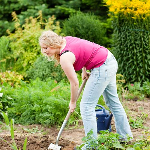 Gardening answer: DIGGING