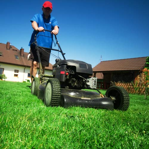 Gardening answer: LAWNMOWER