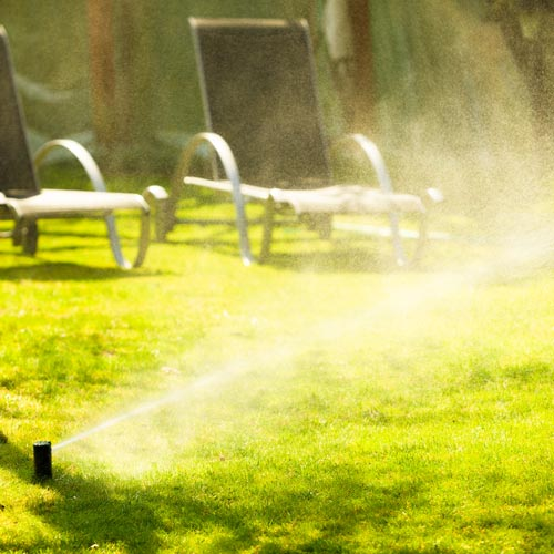 Gardening answer: SPRINKLER