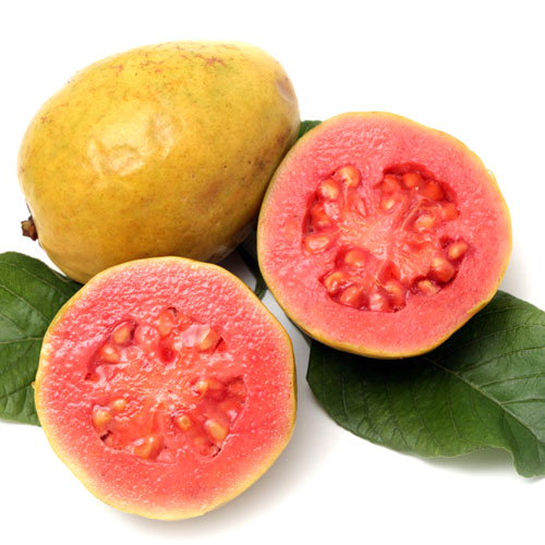 G is for... answer: GUAVA