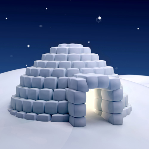 Habitations answer: IGLOO