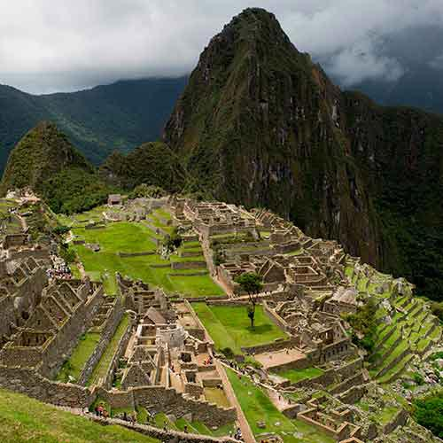 I is for... answer: INCAS