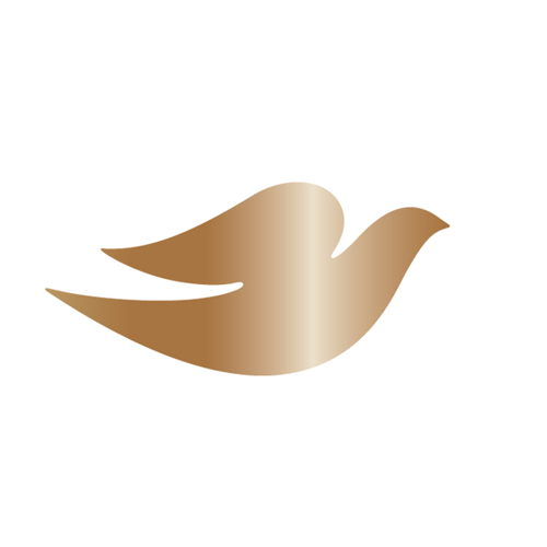 Logos answer: DOVE