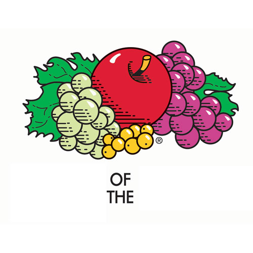 Logos answer: FRUIT OF THE LOOM