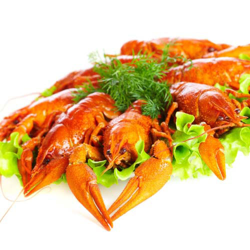 Nourriture answer: HOMARD