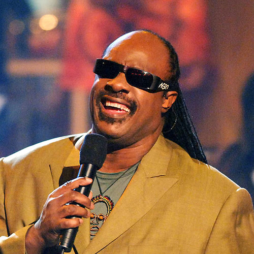 One-Something answer: STEVIE WONDER