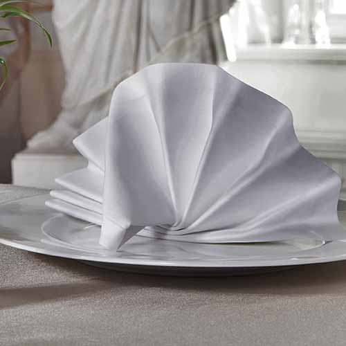 Party answer: NAPKINS