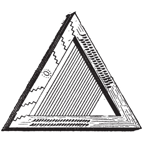 P is for... answer: PSALTERY
