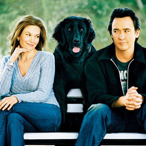 Rom-Coms answer: MUST LOVE DOGS