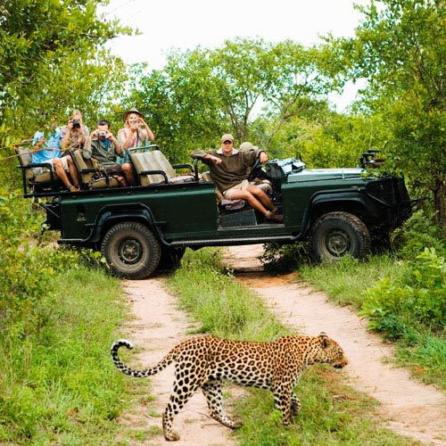Vacances answer: SAFARI